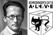 Numerical Exponential Stability of a Time-Dependent Stochastic Schrödinger Equation
